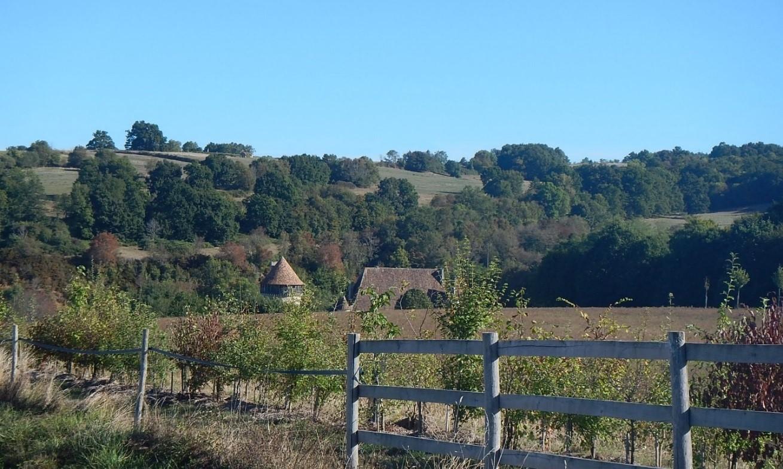 mesures compensatoires plantation de haie a Montbron Charente
